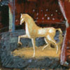 Horse on Stage study